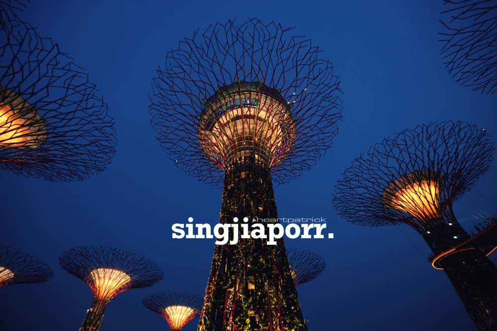 singapore photojournalism street photography gardens by the bay